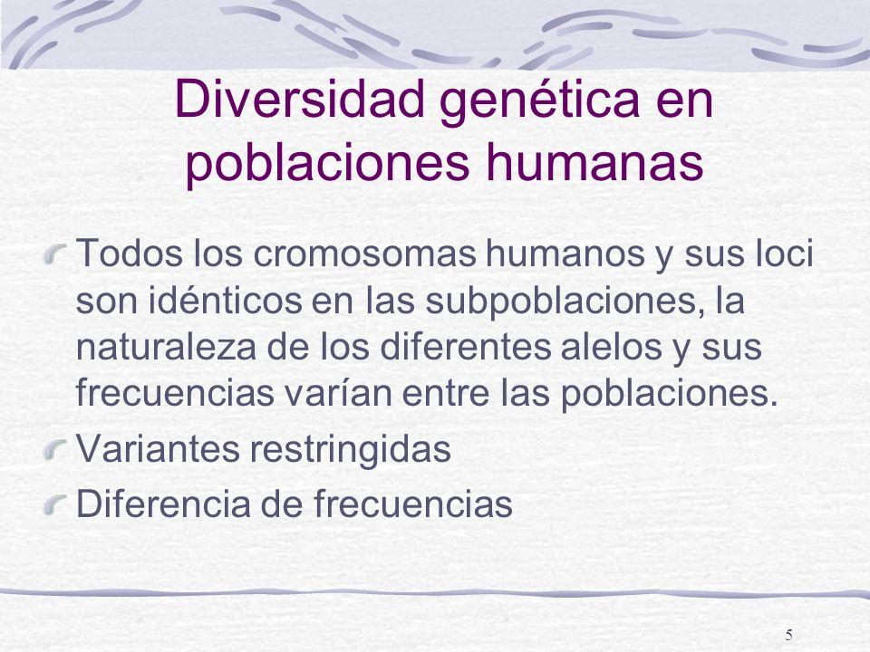 Diversidad genética en poblaciones humanas