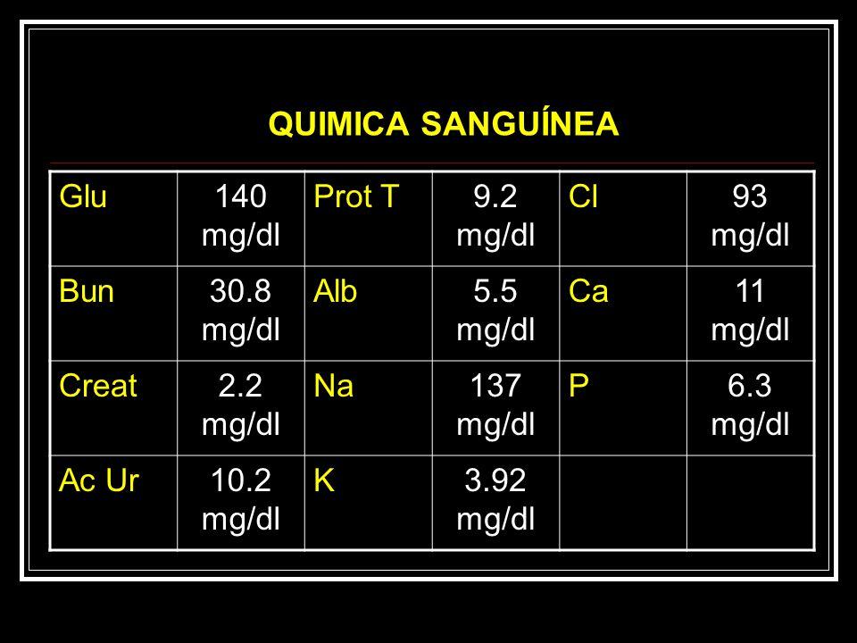 QUIMICA SANGUÍNEA Glu 140 mg/dl Prot T 9.2 mg/dl Cl 93 mg/dl Bun