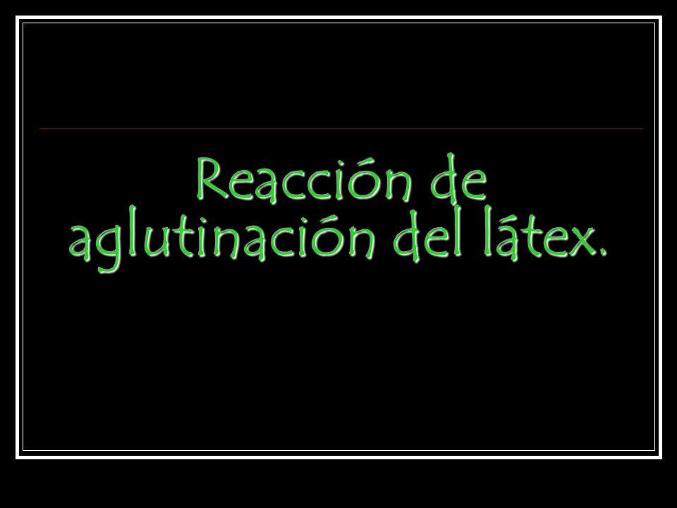 Reacción de aglutinación del látex.