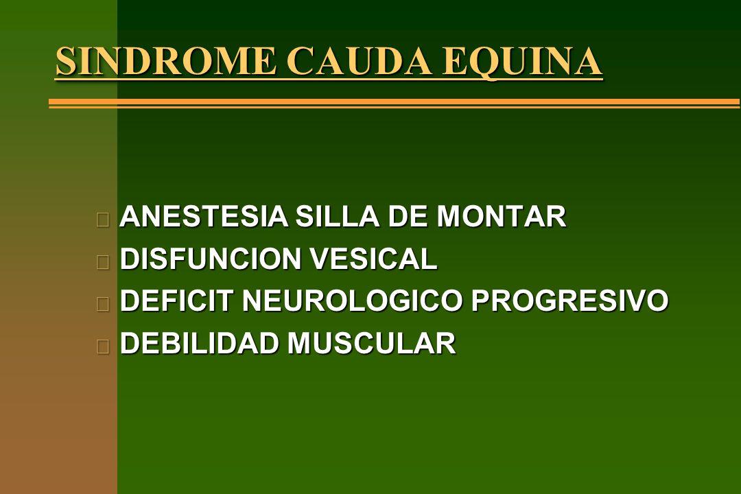SINDROME CAUDA EQUINA ANESTESIA SILLA DE MONTAR DISFUNCION VESICAL