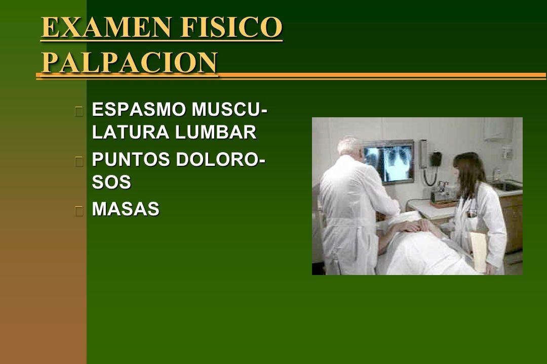 EXAMEN FISICO PALPACION