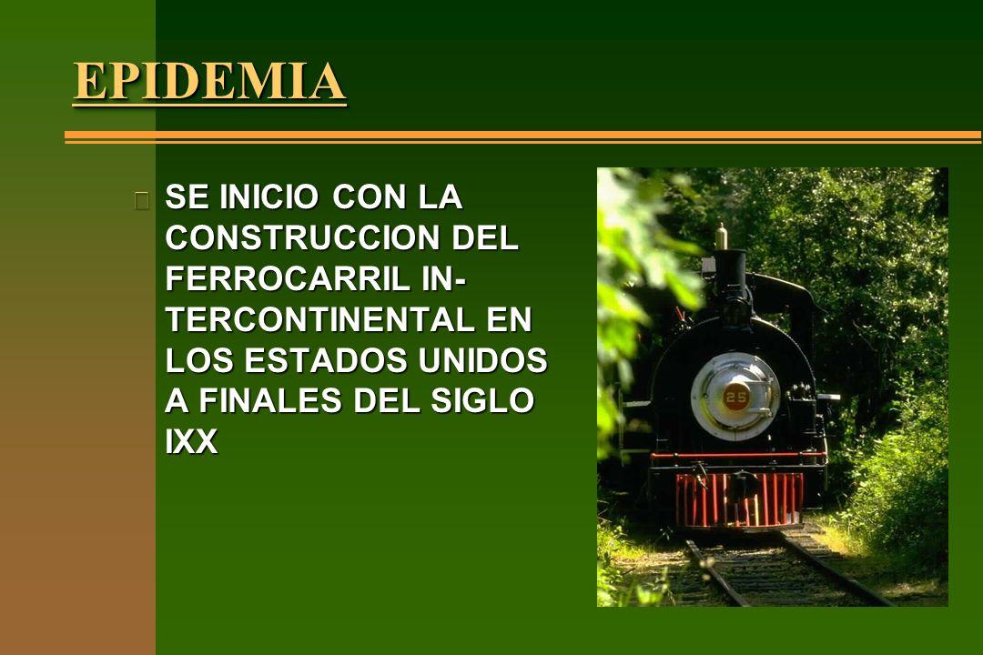 EPIDEMIA SE INICIO CON LA CONSTRUCCION DEL FERROCARRIL IN-TERCONTINENTAL EN LOS ESTADOS UNIDOS A FINALES DEL SIGLO IXX.