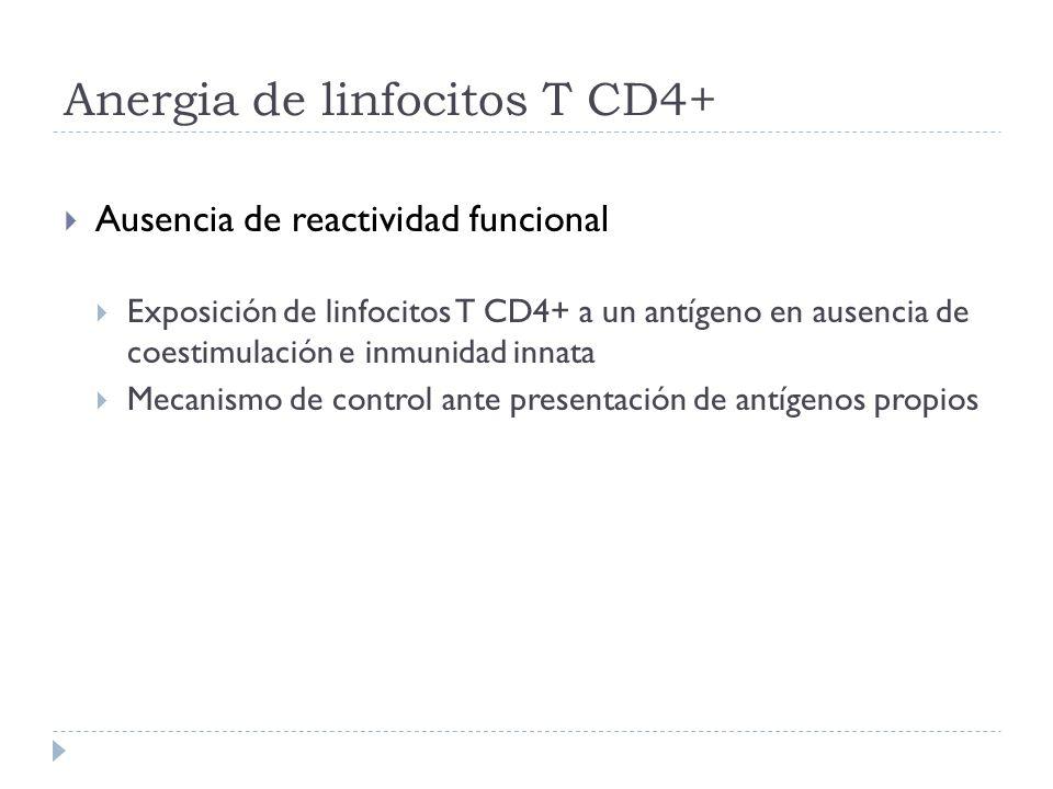Anergia de linfocitos T CD4+