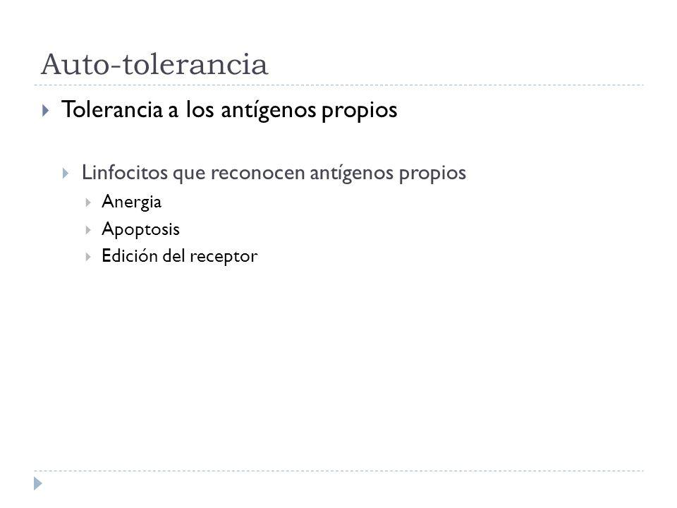 Auto-tolerancia Tolerancia a los antígenos propios