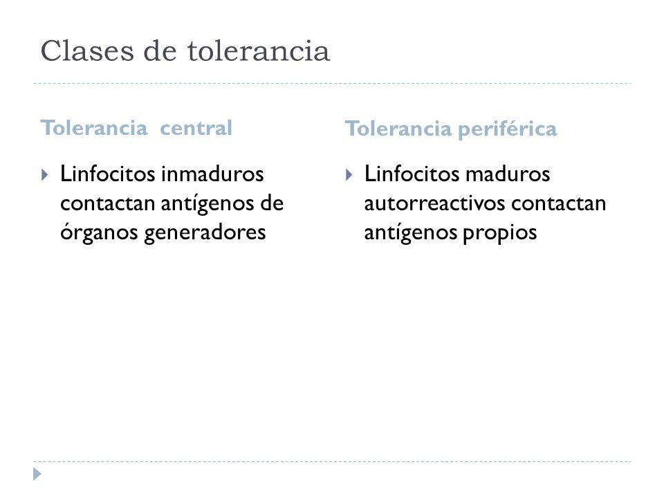 Clases de tolerancia Tolerancia central. Tolerancia periférica. Linfocitos inmaduros contactan antígenos de órganos generadores.