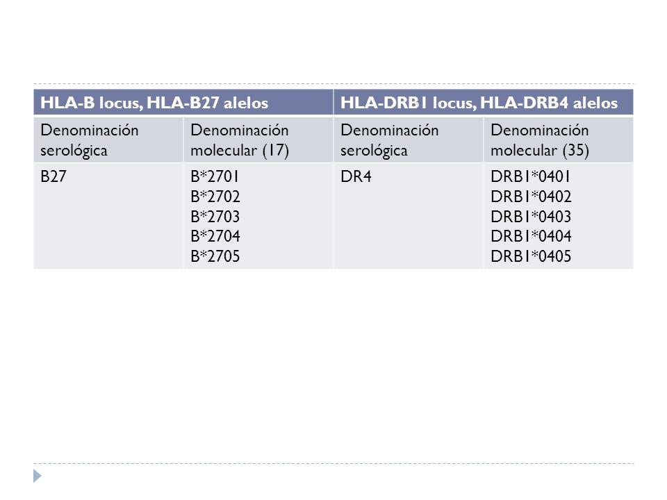 HLA-B locus, HLA-B27 alelos