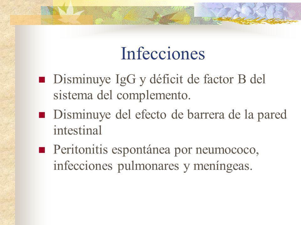 InfeccionesDisminuye IgG y déficit de factor B del sistema del complemento. Disminuye del efecto de barrera de la pared intestinal.