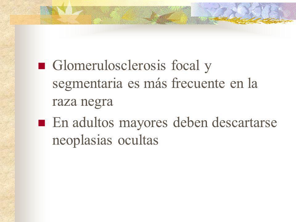 Glomerulosclerosis focal y segmentaria es más frecuente en la raza negra