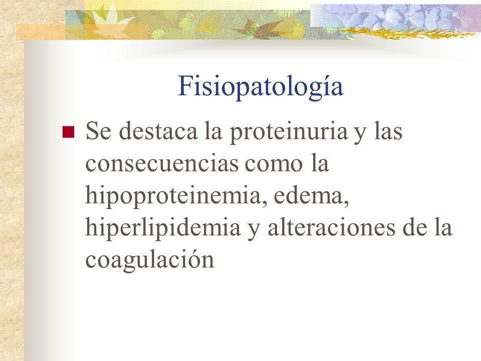 Fisiopatología Se destaca la proteinuria y las consecuencias como la hipoproteinemia, edema, hiperlipidemia y alteraciones de la coagulación.