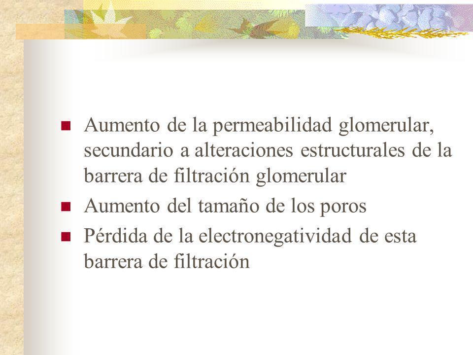 Aumento de la permeabilidad glomerular, secundario a alteraciones estructurales de la barrera de filtración glomerular
