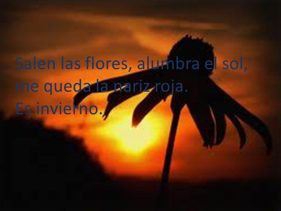 Salen las flores, alumbra el sol,