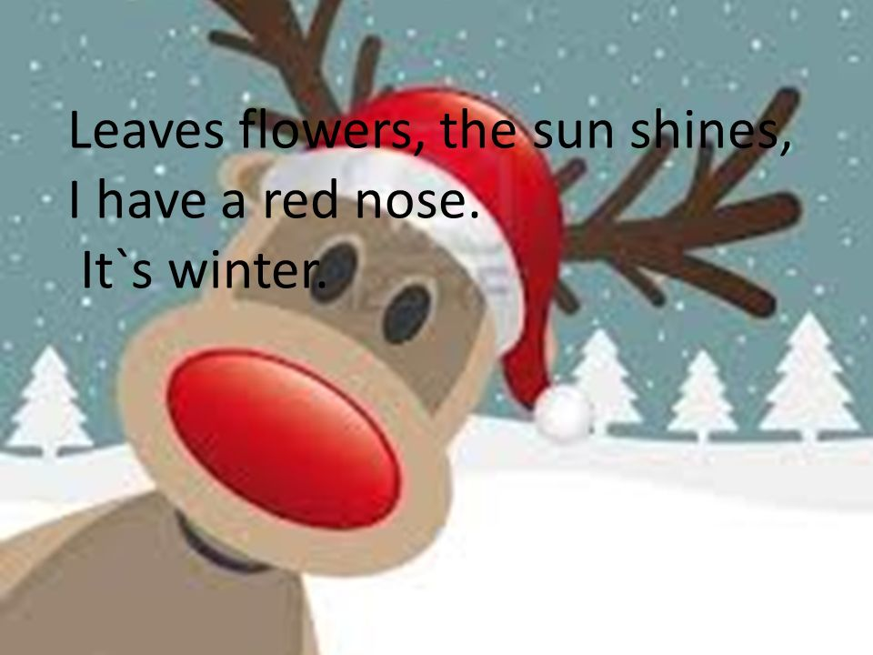 Leaves flowers, the sun shines, I have a red nose.