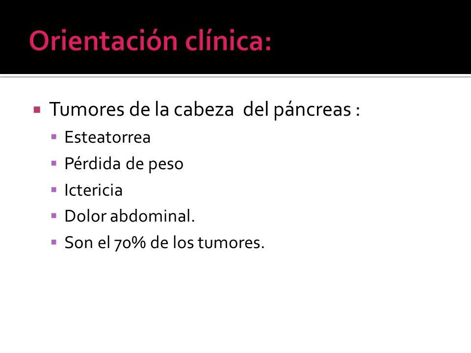 Orientación clínica: Tumores de la cabeza del páncreas : Esteatorrea