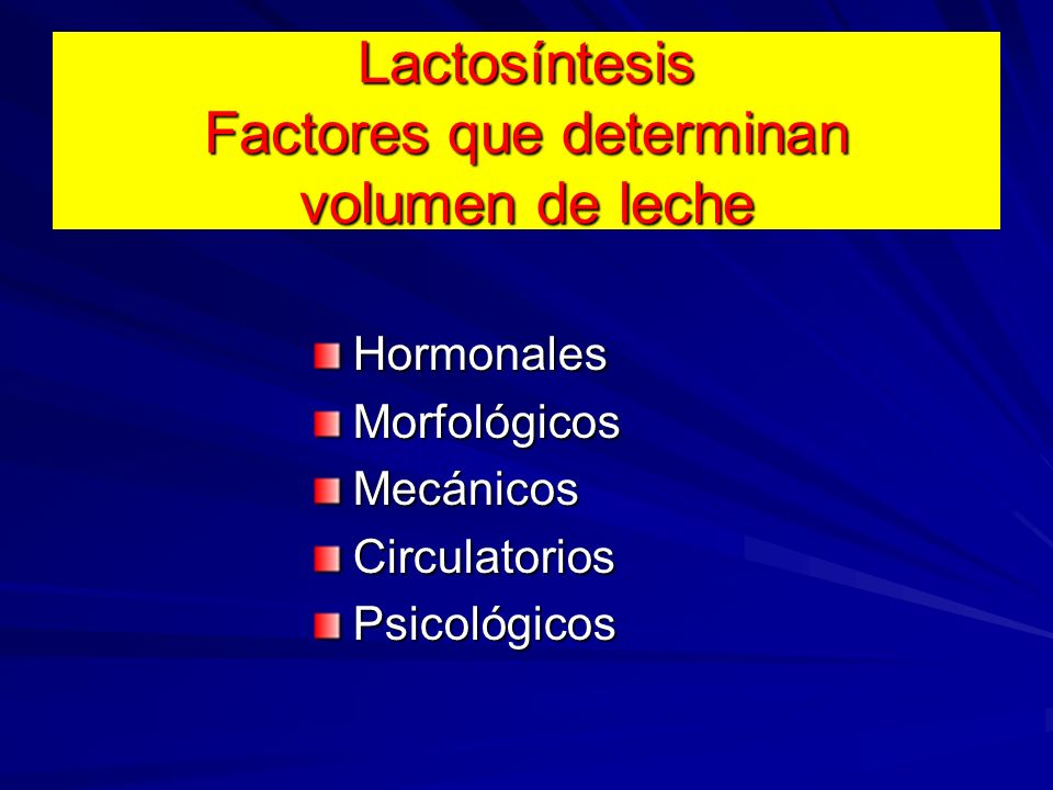 Lactosíntesis Factores que determinan volumen de leche
