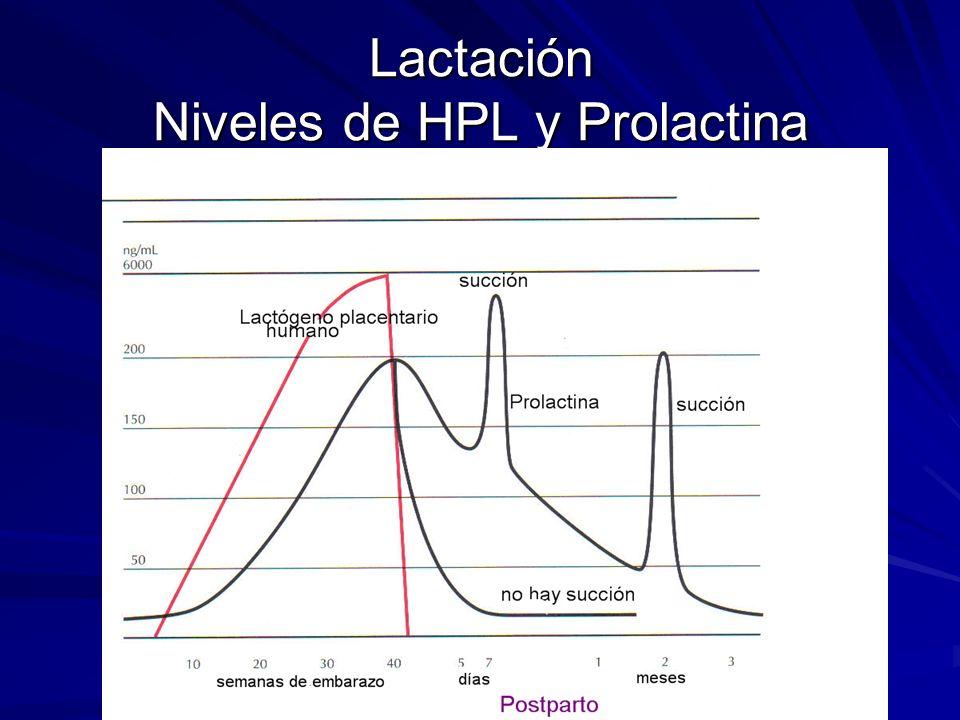 Lactación Niveles de HPL y Prolactina