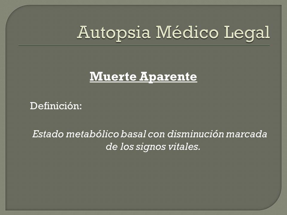 Estado metabólico basal con disminución marcada de los signos vitales.