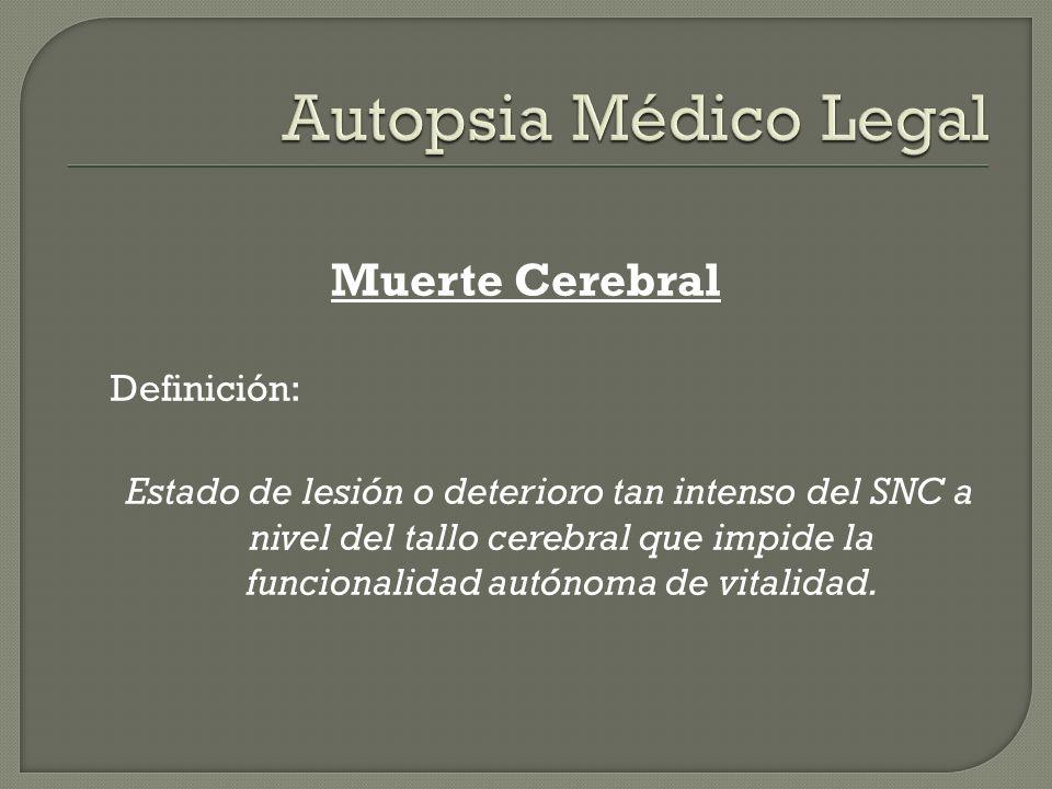 Autopsia Médico Legal Muerte Cerebral Definición: