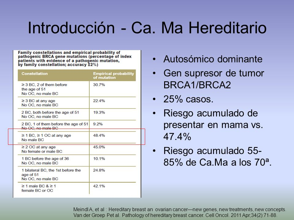 Introducción - Ca. Ma Hereditario