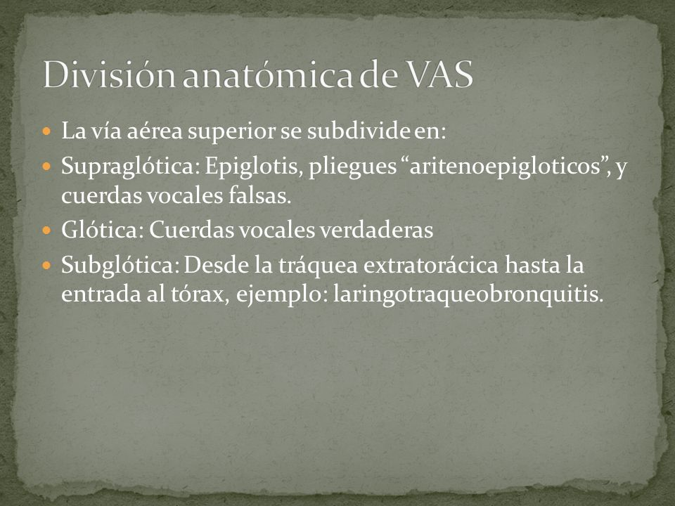 División anatómica de VAS
