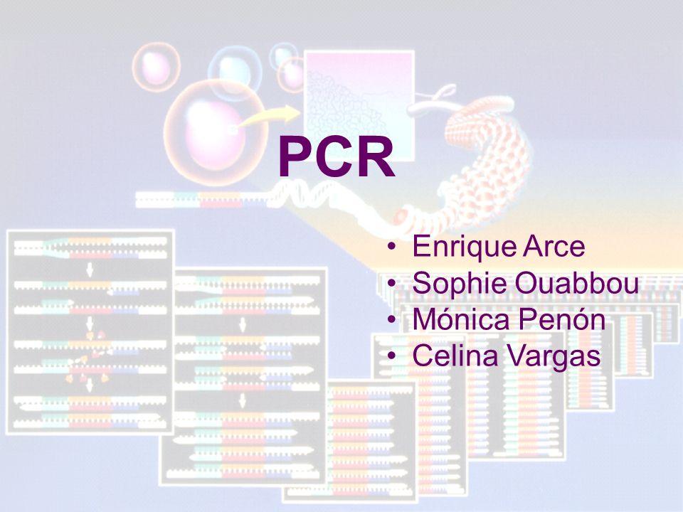 PCR Enrique Arce Sophie Ouabbou Mónica Penón Celina Vargas