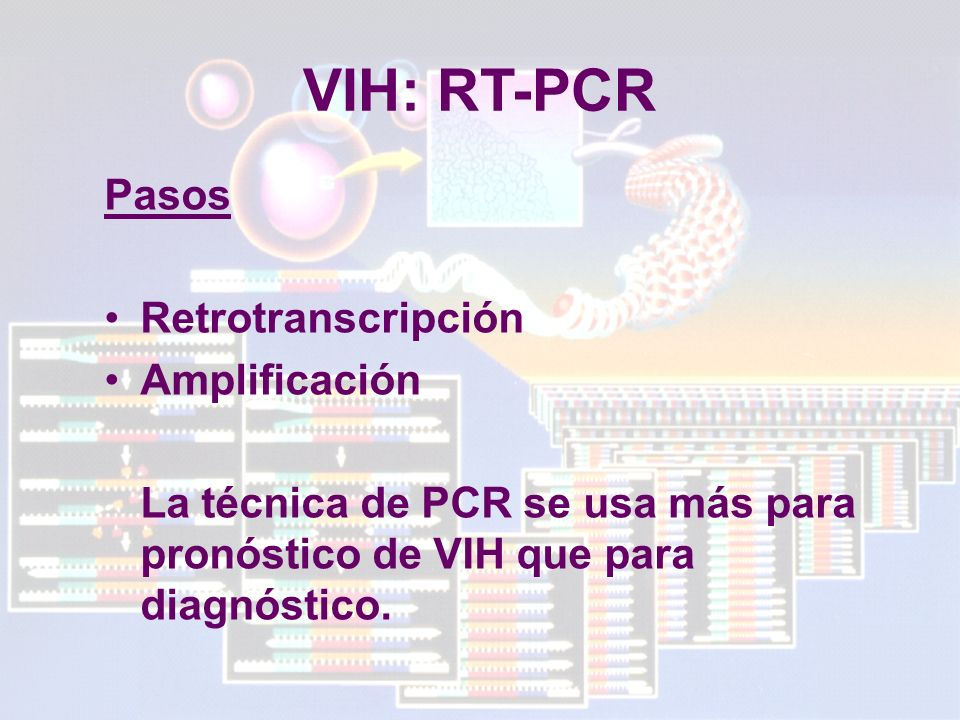 VIH: RT-PCR Pasos Retrotranscripción Amplificación
