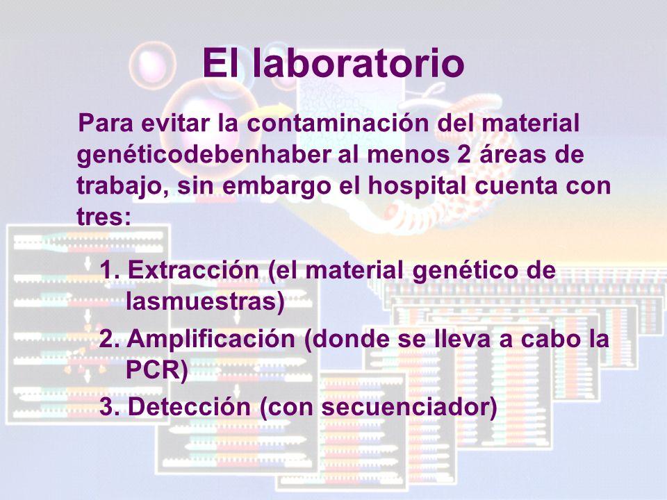 El laboratorio Para evitar la contaminación del material genéticodebenhaber al menos 2 áreas de trabajo, sin embargo el hospital cuenta con tres: