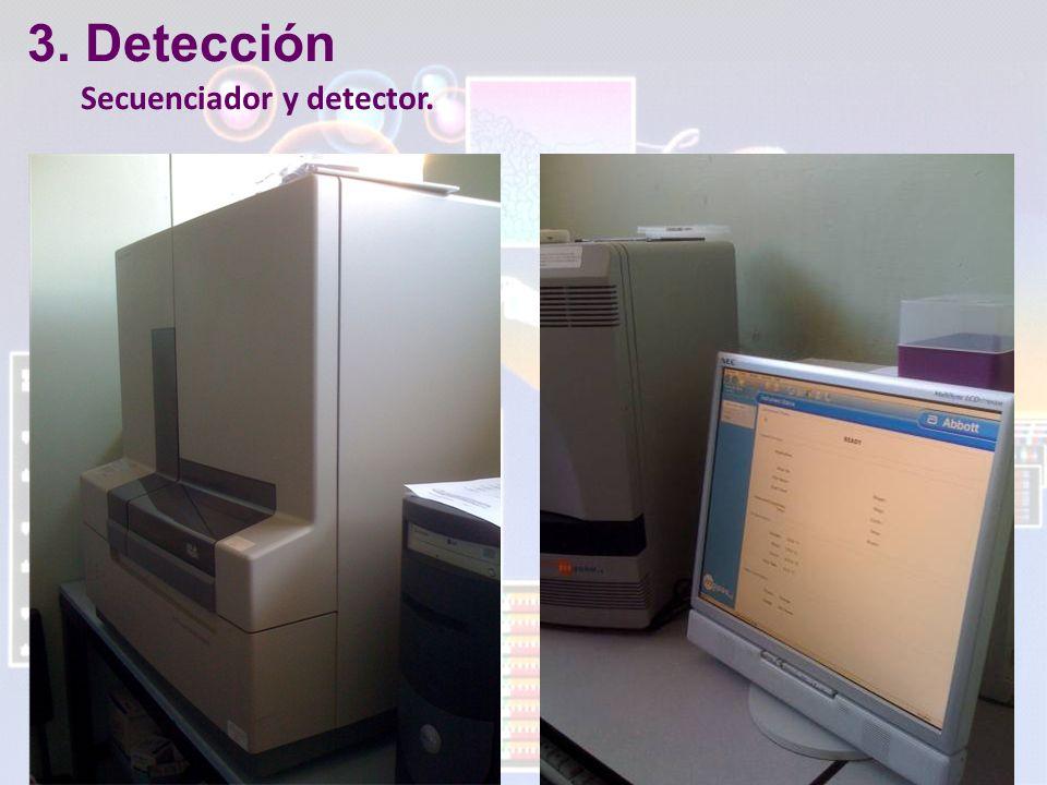 3. Detección Secuenciador y detector.