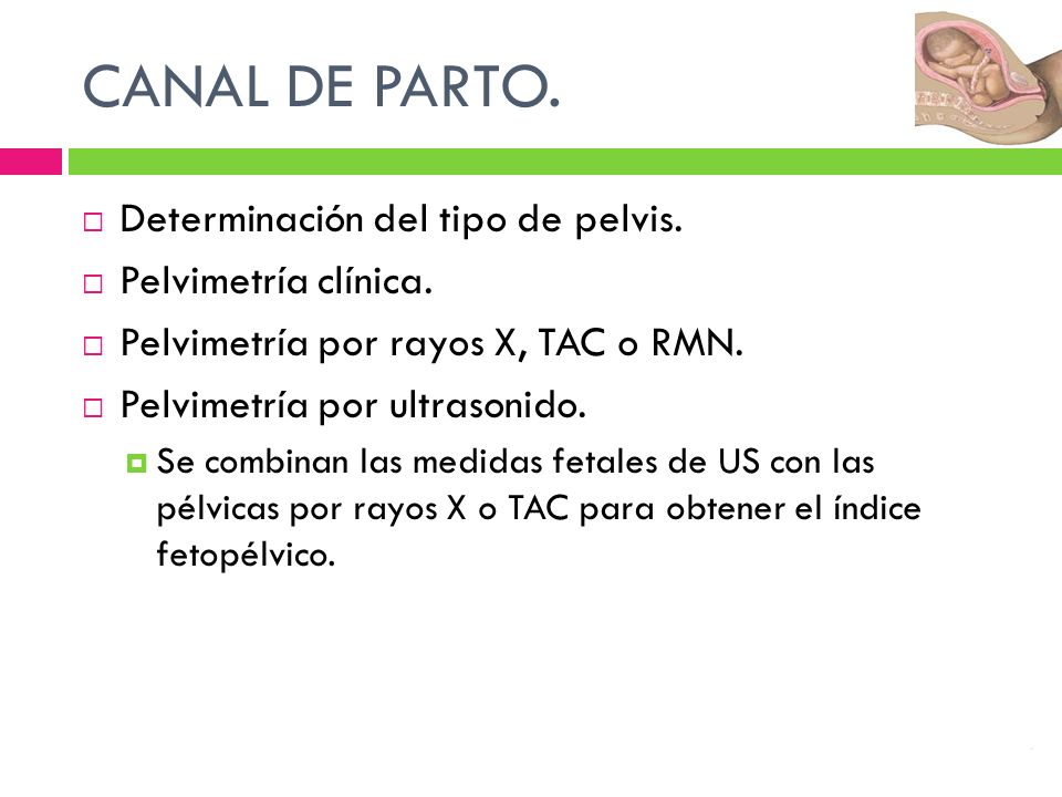 CANAL DE PARTO. Determinación del tipo de pelvis. Pelvimetría clínica.