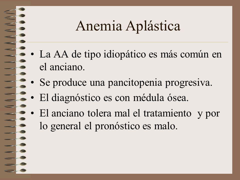 Anemia Aplástica La AA de tipo idiopático es más común en el anciano.