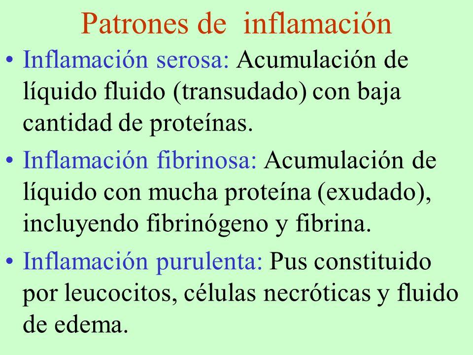 Patrones de inflamación
