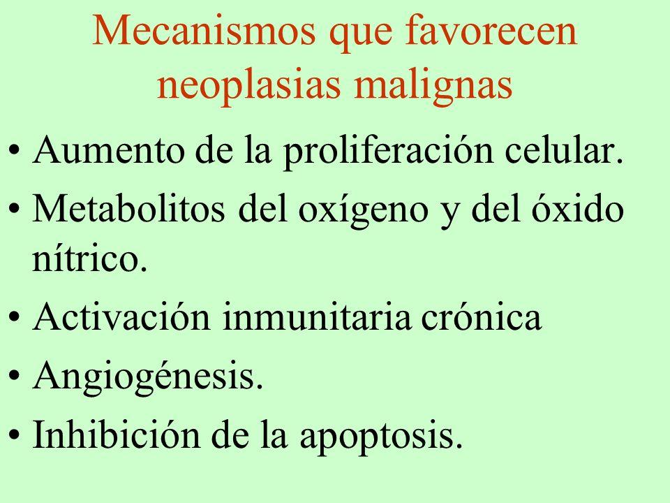 Mecanismos que favorecen neoplasias malignas
