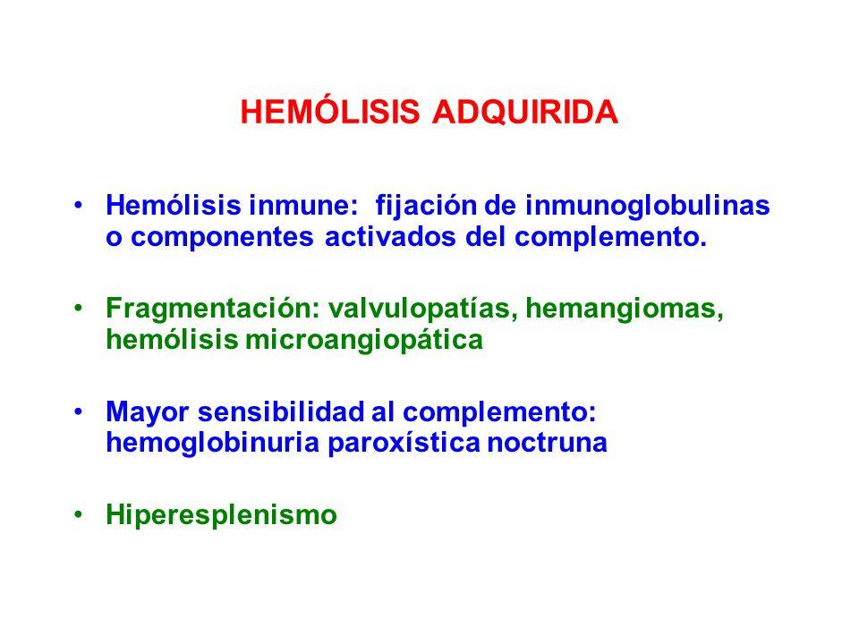 HEMÓLISIS ADQUIRIDA Hemólisis inmune: fijación de inmunoglobulinas o componentes activados del complemento.