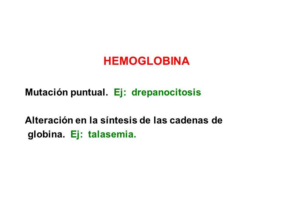 HEMOGLOBINA Mutación puntual. Ej: drepanocitosis