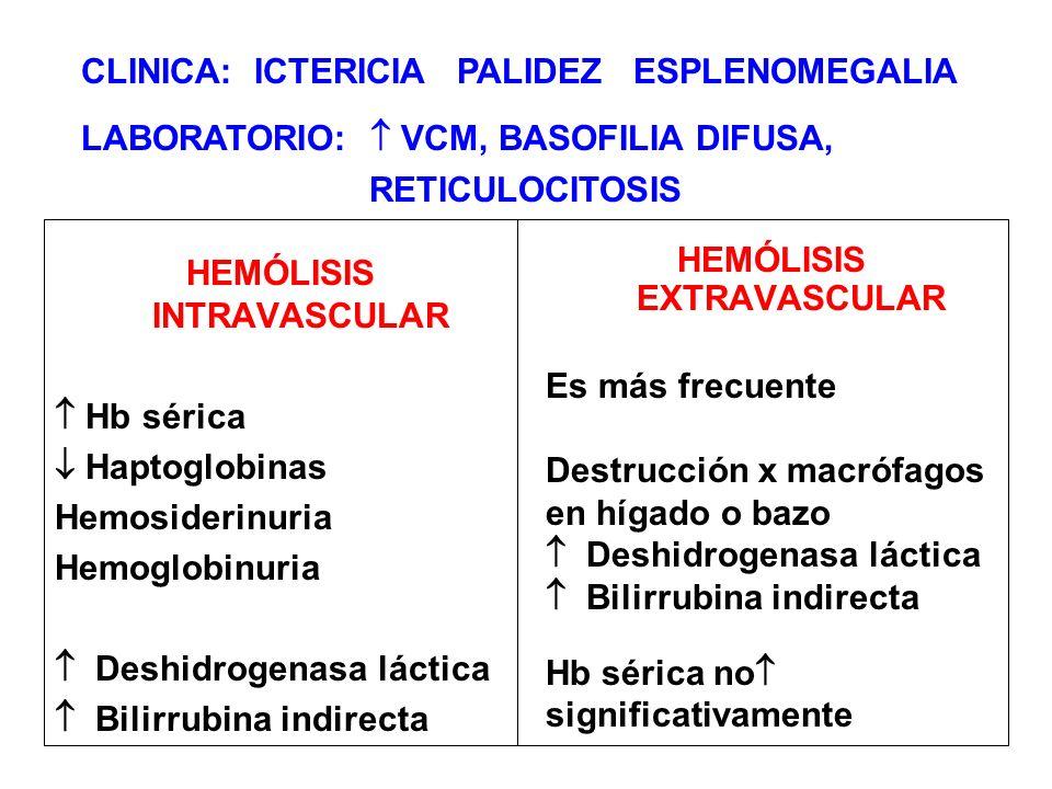 HEMÓLISIS EXTRAVASCULAR HEMÓLISIS INTRAVASCULAR