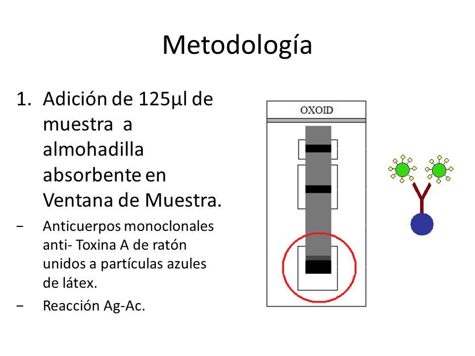 MetodologíaAdición de 125µl de muestra a almohadilla absorbente en Ventana de Muestra.