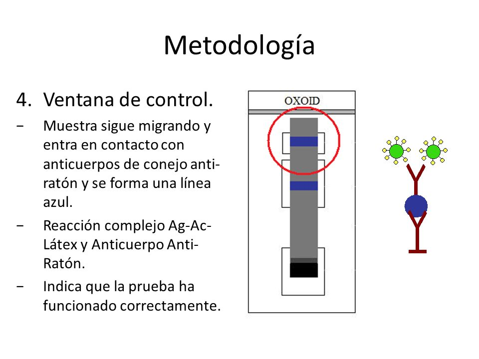 Metodología Ventana de control.