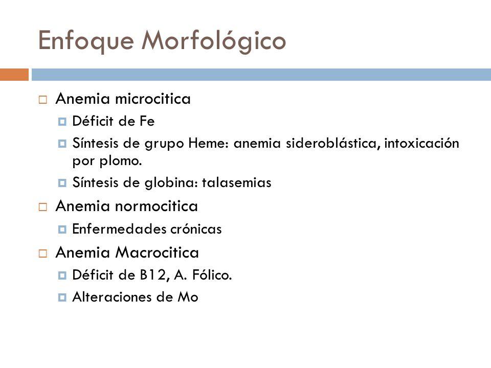 Enfoque Morfológico Anemia microcitica Anemia normocitica