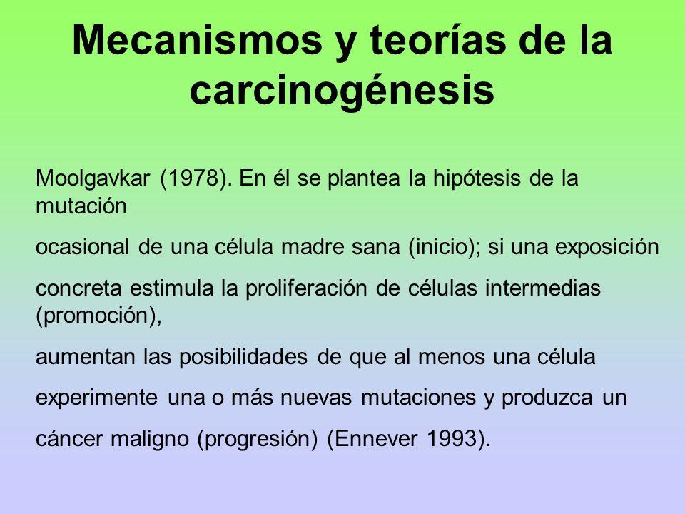 Mecanismos y teorías de la carcinogénesis