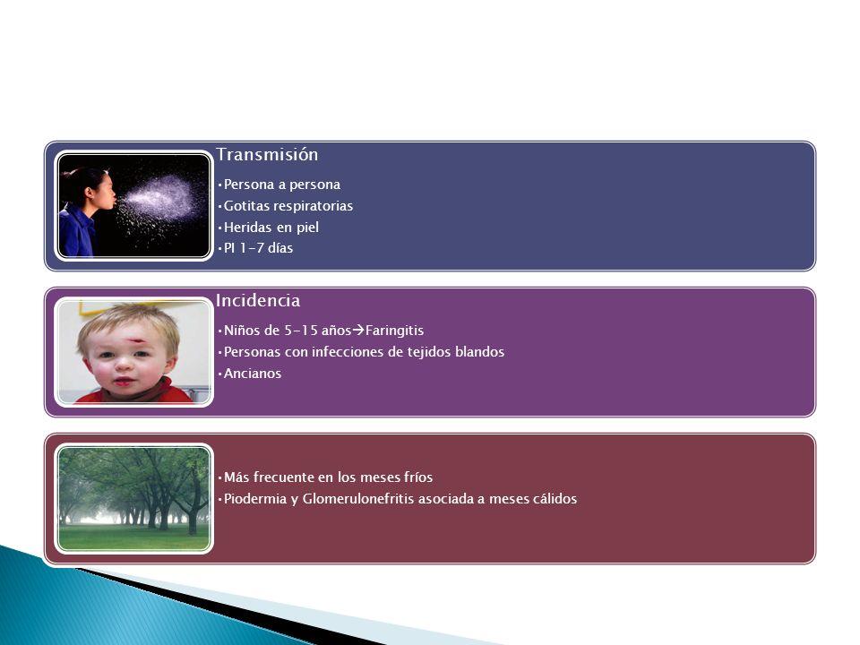 TransmisiónPersona a persona. Gotitas respiratorias. Heridas en piel. PI 1-7 días. Incidencia. Niños de 5-15 añosFaringitis.