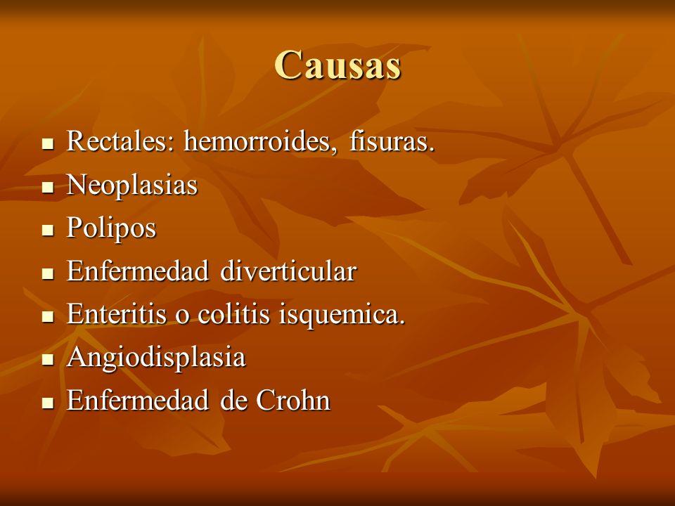 Causas Rectales: hemorroides, fisuras. Neoplasias Polipos