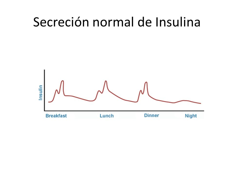 Secreción normal de Insulina