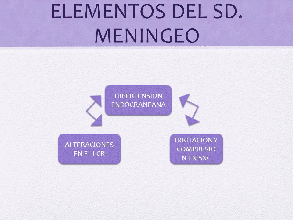 ELEMENTOS DEL SD. MENINGEO