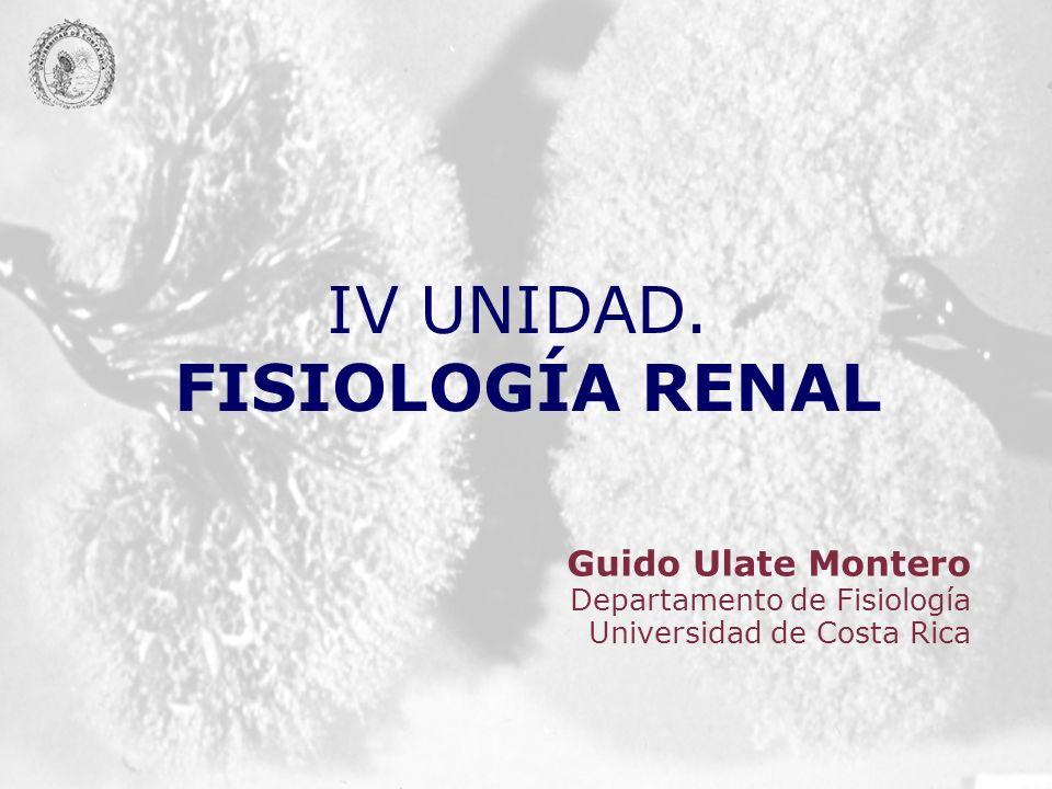 IV UNIDAD. FISIOLOGÍA RENAL