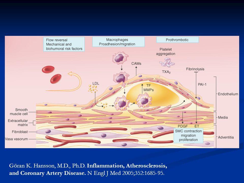Göran K. Hansson, M.D., Ph.D. Inflammation, Atherosclerosis,