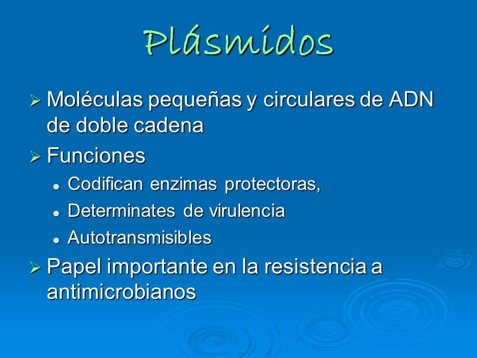 Plásmidos Moléculas pequeñas y circulares de ADN de doble cadena