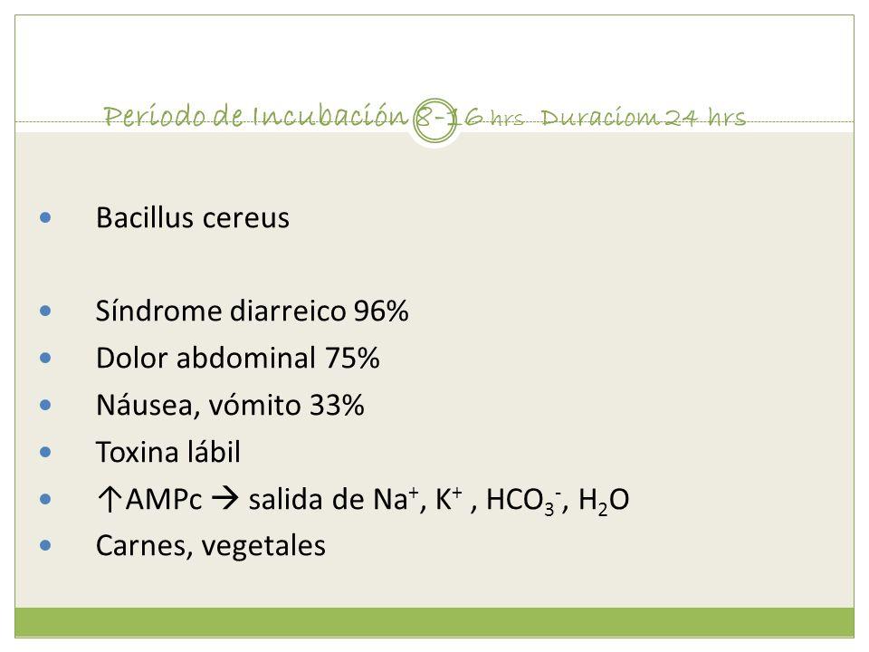 Periodo de Incubación 8-16 hrs Duraciom 24 hrs