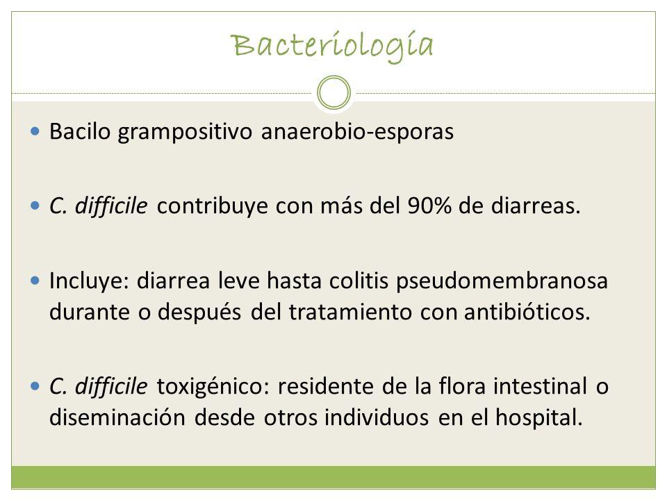 Bacteriología Bacilo grampositivo anaerobio-esporas