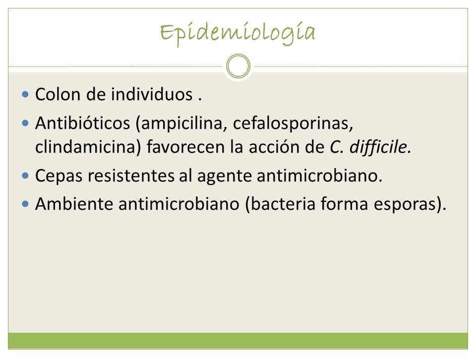 Epidemiología Colon de individuos .