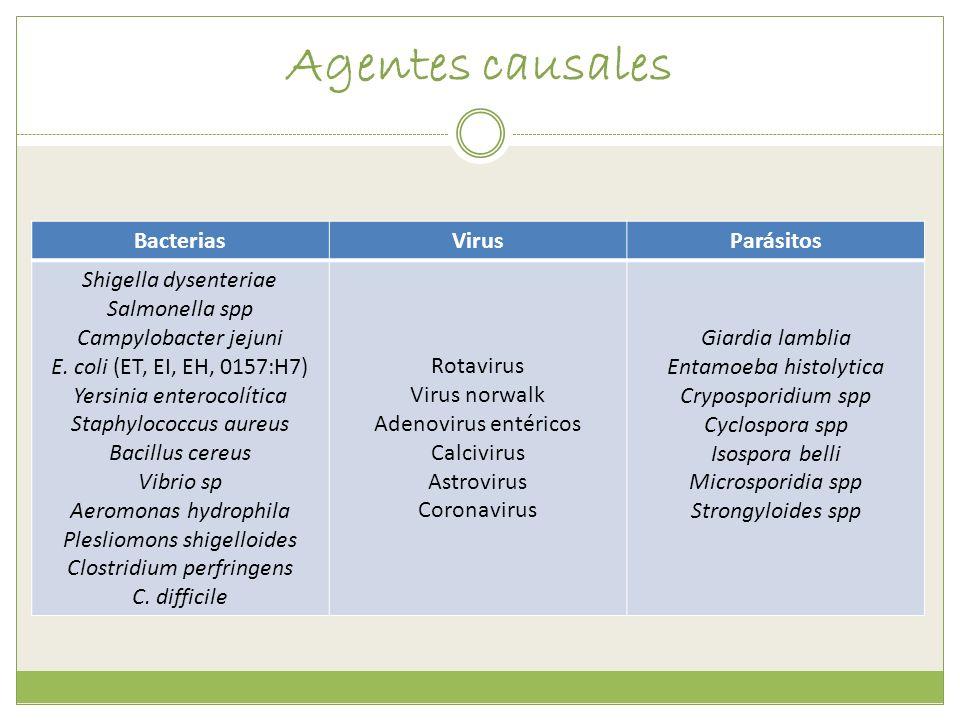 Agentes causales Bacterias Virus Parásitos Shigella dysenteriae