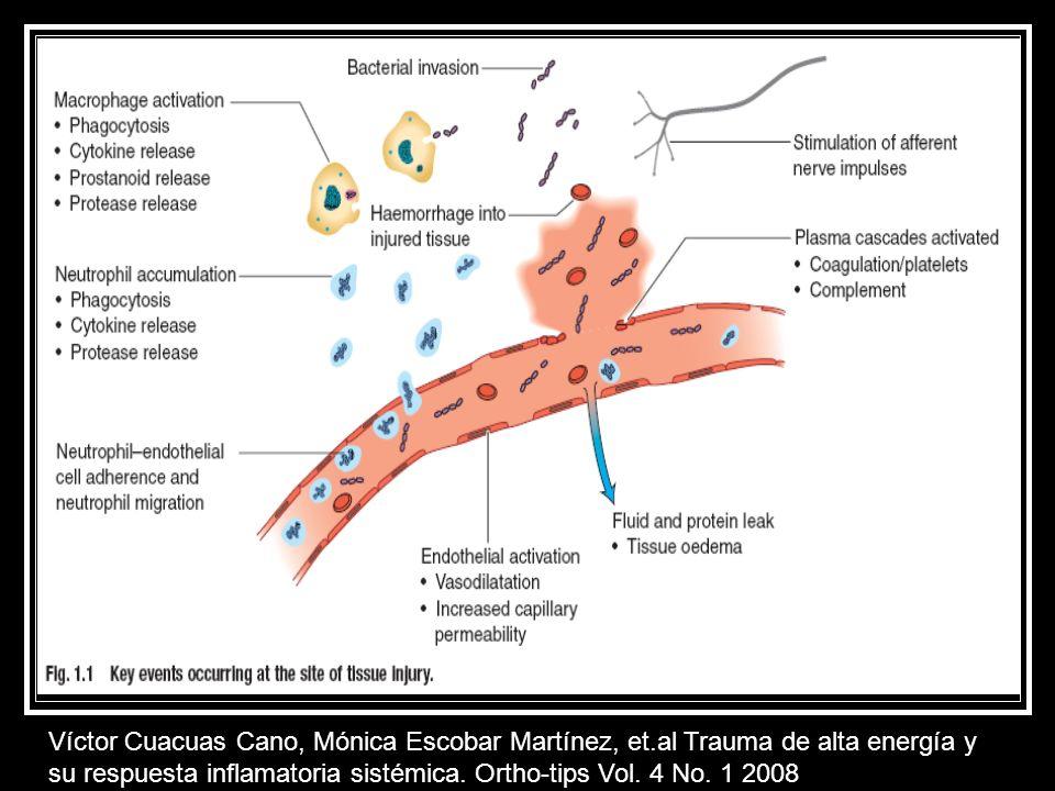 Daño fisiológico local por células como los macrófagos, citoquinas que se encargan de limpiar tejidos muertos y destruir bacterias